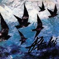 Ptaki - Wśród ptaków